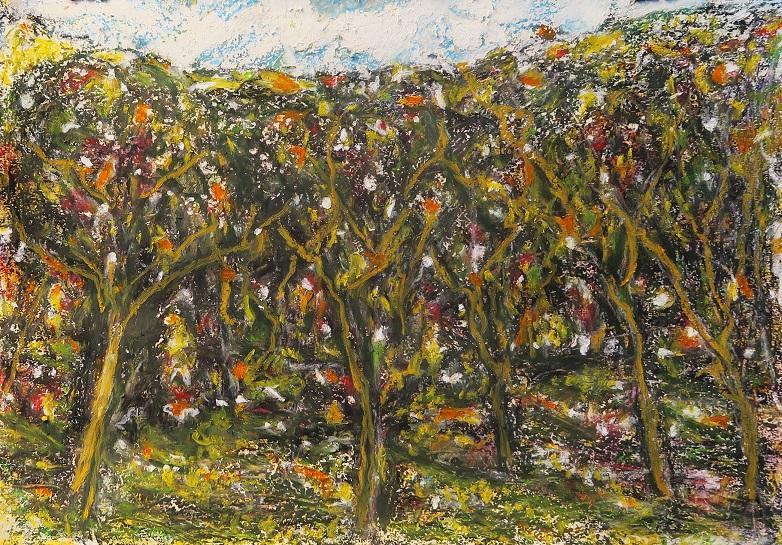 Michel Millaud MIO Artiste Peintre